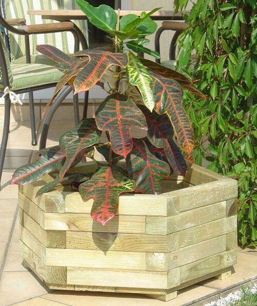 Blumenkasten 6-eckig Hispida 1 - Abmessung: 60 x 60 x 22 cm (B x T x H)