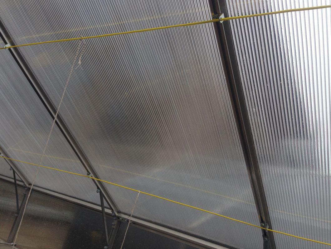 Haltevorrichtung für Pflanzen für Gewächshaus mit 400 cm Länge